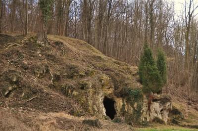 Brakkenberg